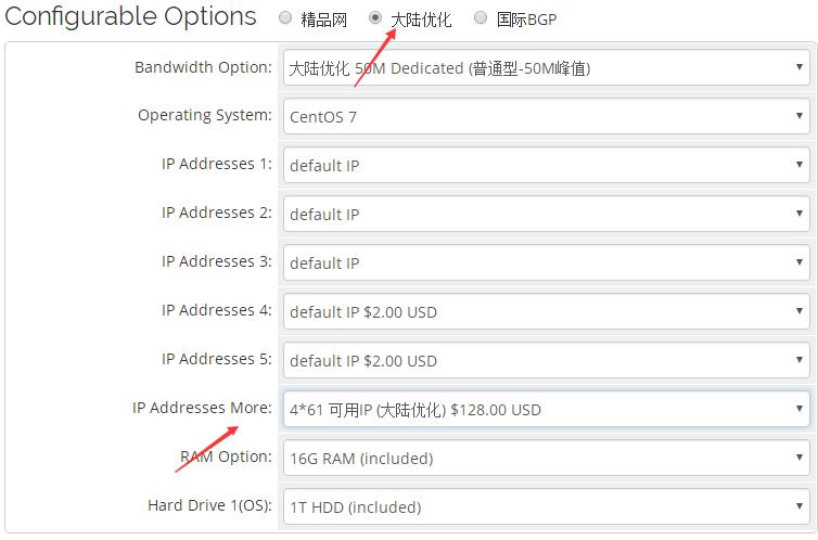 RAKsmart站群服务器大陆优化IP