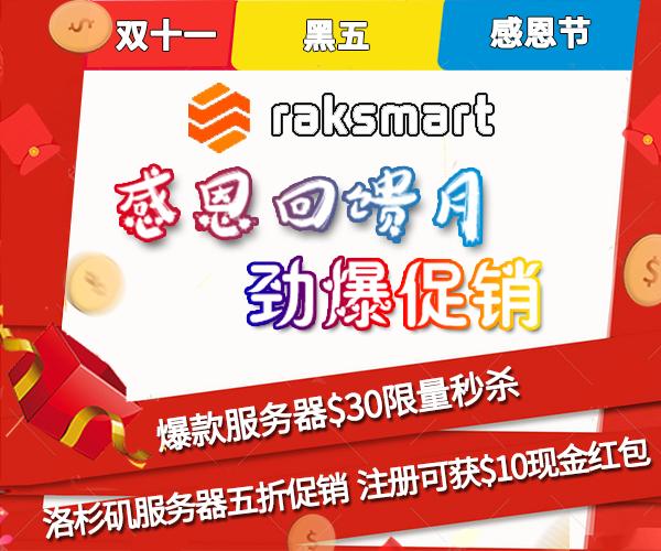 RAKsmart国外服务器双十一活动