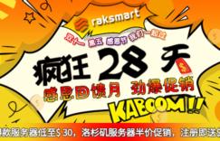 RAKsmart国外服务器双11活动