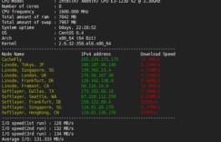 RAKsmart美国高防服务器综合性能测评