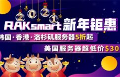 RAKsmart国外服务器新年活动