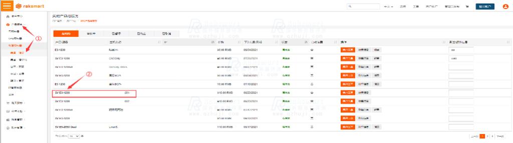RAKsmart客户后台面板流量查询