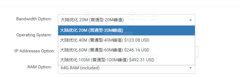 RAKsmart香港站群服务器
